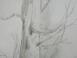 kreslím co vidím