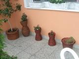 Jarní okno