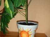 Ubrousková technika - květináče